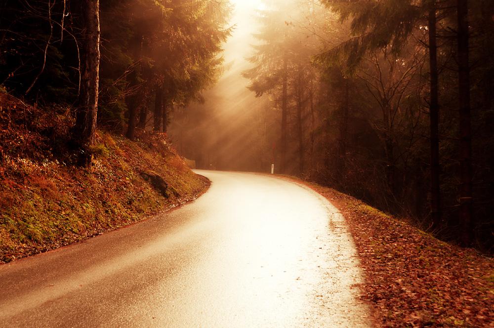 Road to Gerlitzen / Austria