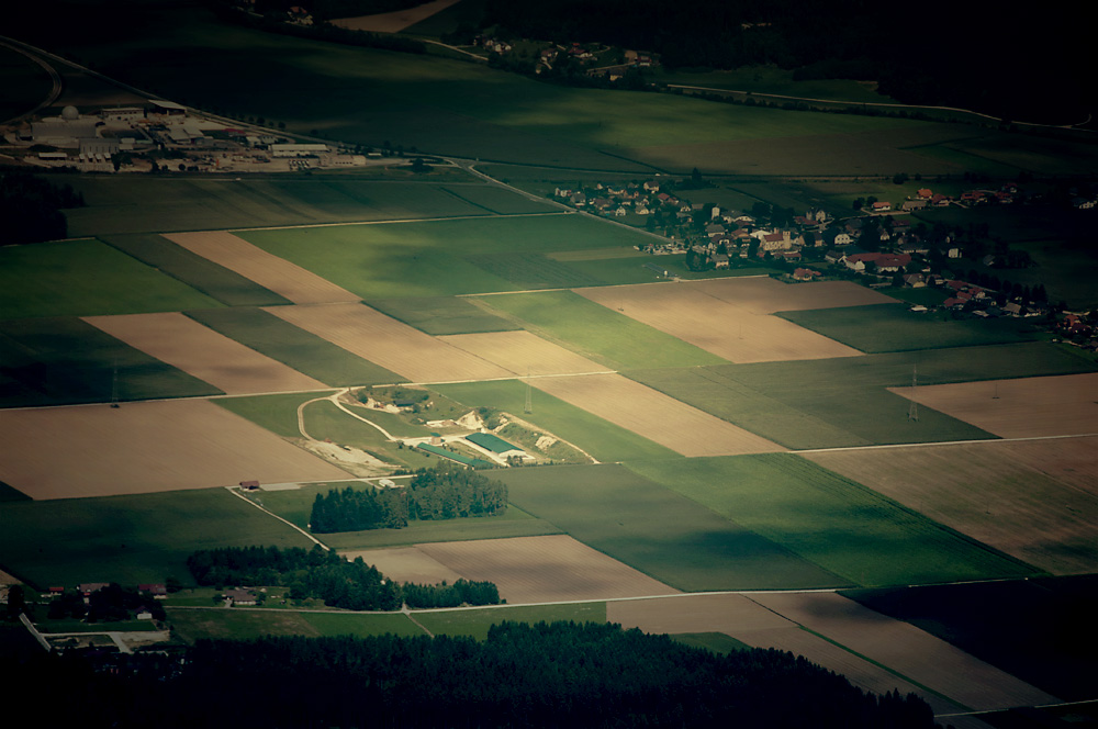 Fields of grain top view