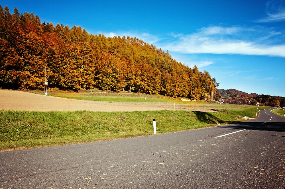 The sun still shining in autumn